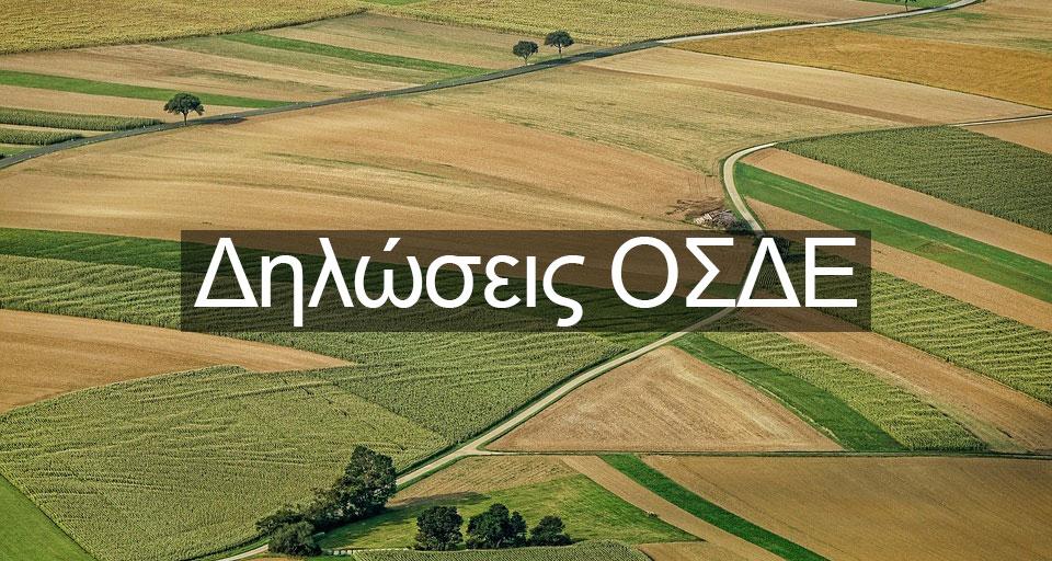 osde1